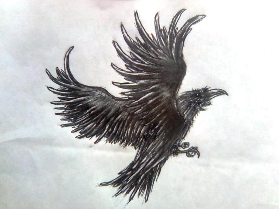 crow sketch by jokershadow666 on deviantart