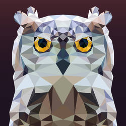 Low Poly - Owl