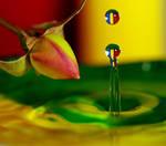 water+flower by xiawenjie830