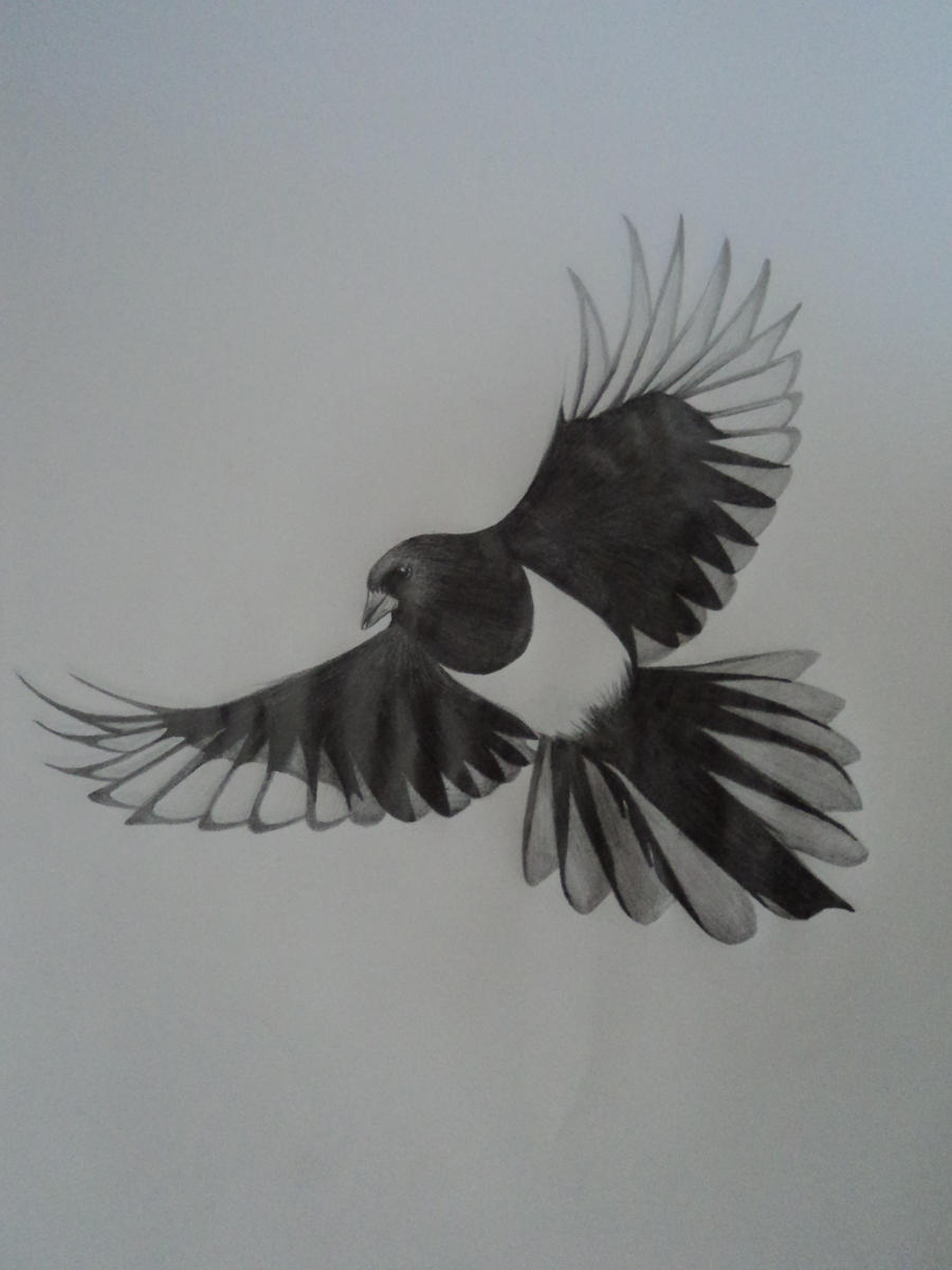Traditional magpie tattoo - photo#6