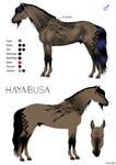 Hayabusa Reference Sheet