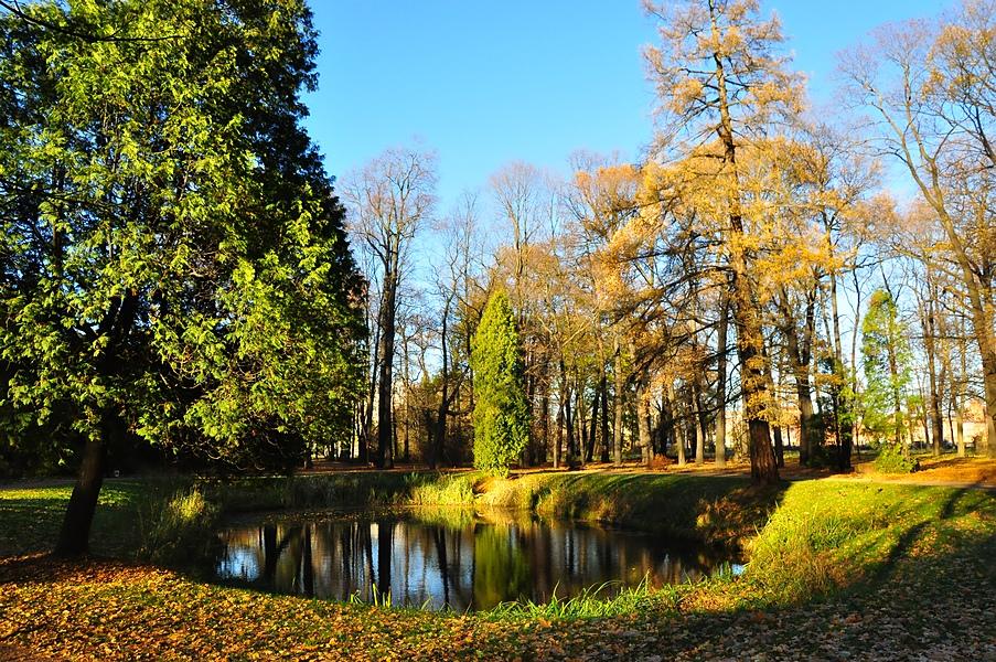 Park5 by Zaratra