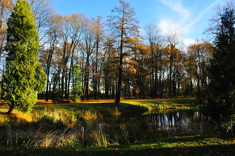 Park4 by Zaratra