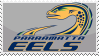 Parramatta Eels by SuperKawaiiMochi