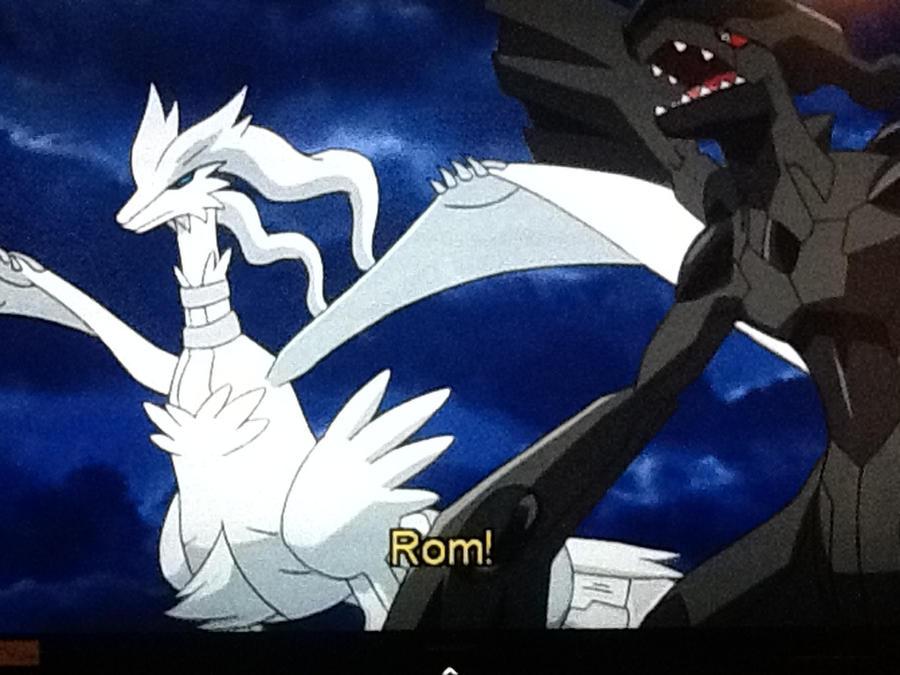 Reshiram and Zekrom by LunaHydreigon