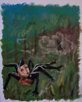 Anansi on the Run by stardrop