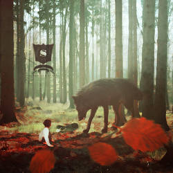 Black Wolf by SalmanAboFaisal
