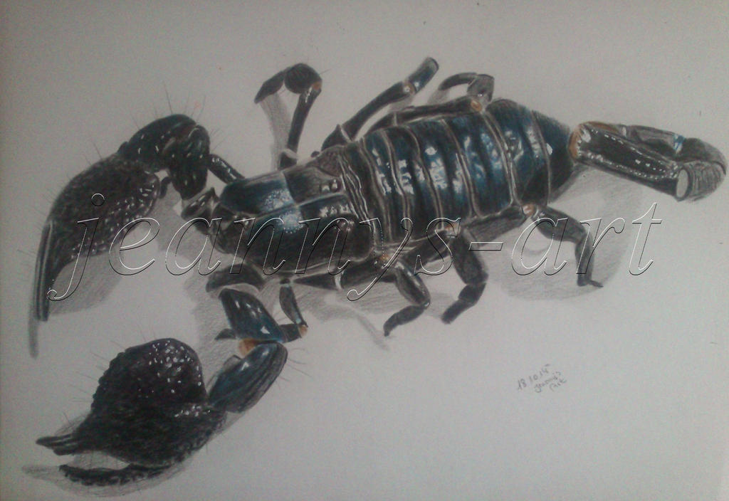 Skorpion by Jeanny842