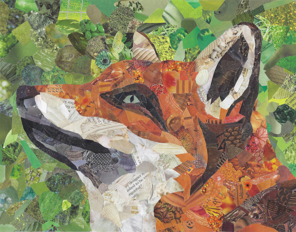 Fox Collage by merwolves