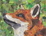 Fox Collage