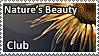 NBC stamp by justeline