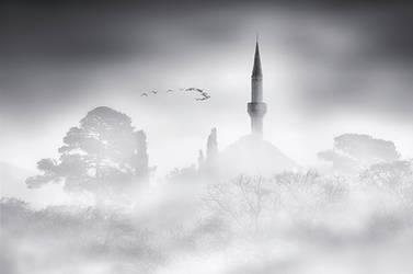 Beyond the Mist