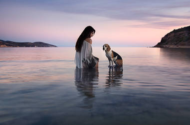 Companions by justeline