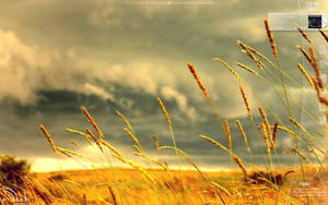 Catcher in the Rye by an95dy
