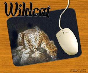 Wildcat Mousepad by wildcatskye