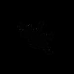 Logo2015T1
