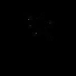 Logo2015T2