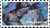 Chalcopyrite by wallabean