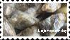 Labradorite by wallabean