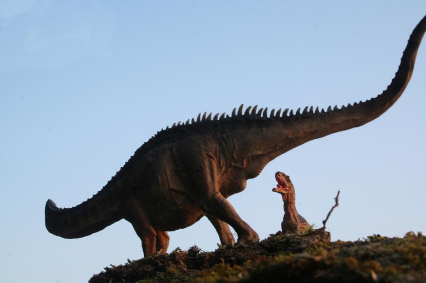 Apatosaurus vs Allosaurus by JeremyK9 on DeviantArt