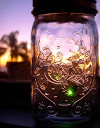Firefly in a jar by DreamsCatchMe