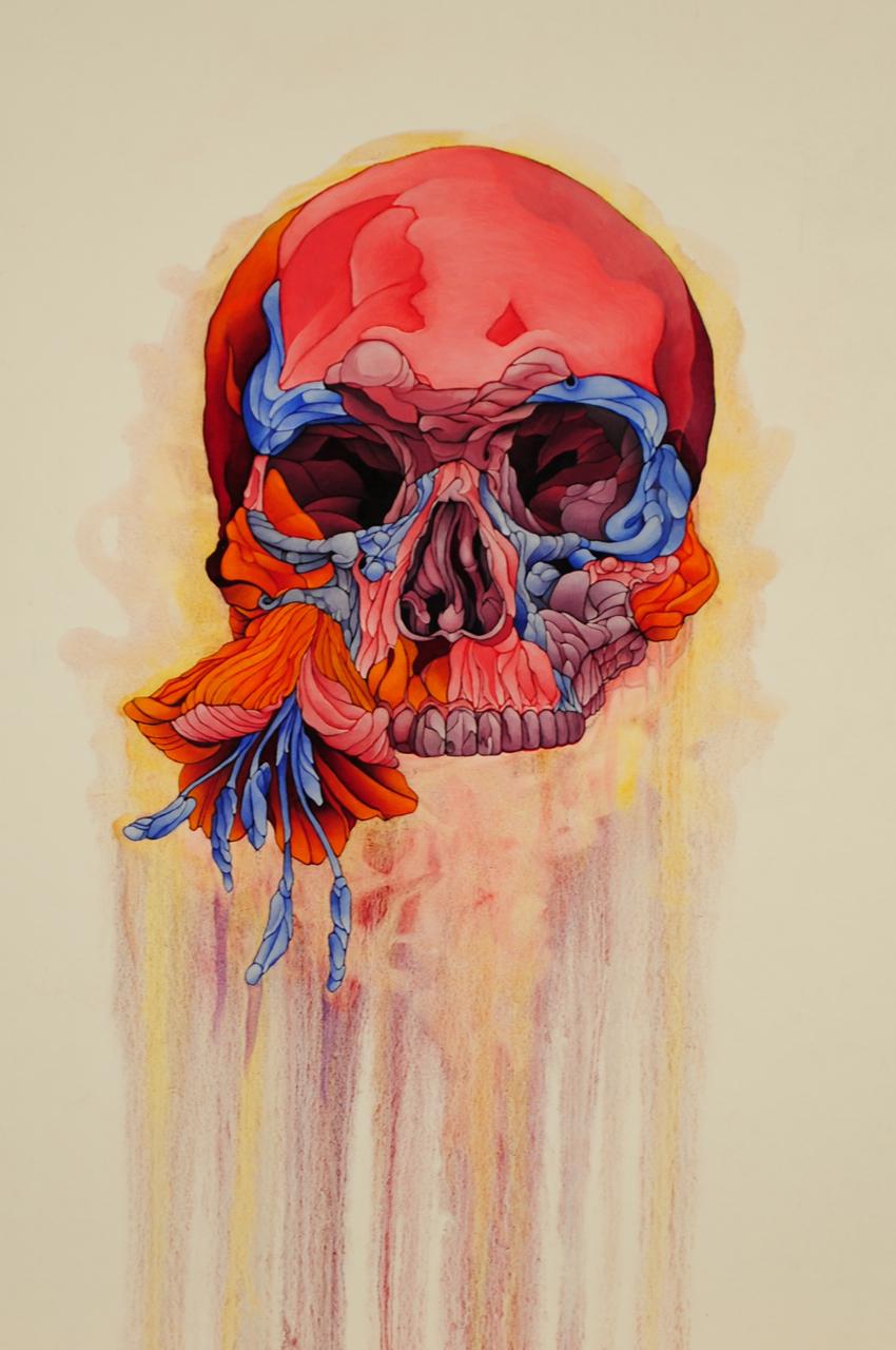 Flower and Skull Study #1 by brentonbostwick on DeviantArt