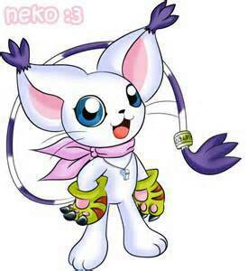 Gatomon360's Profile Picture
