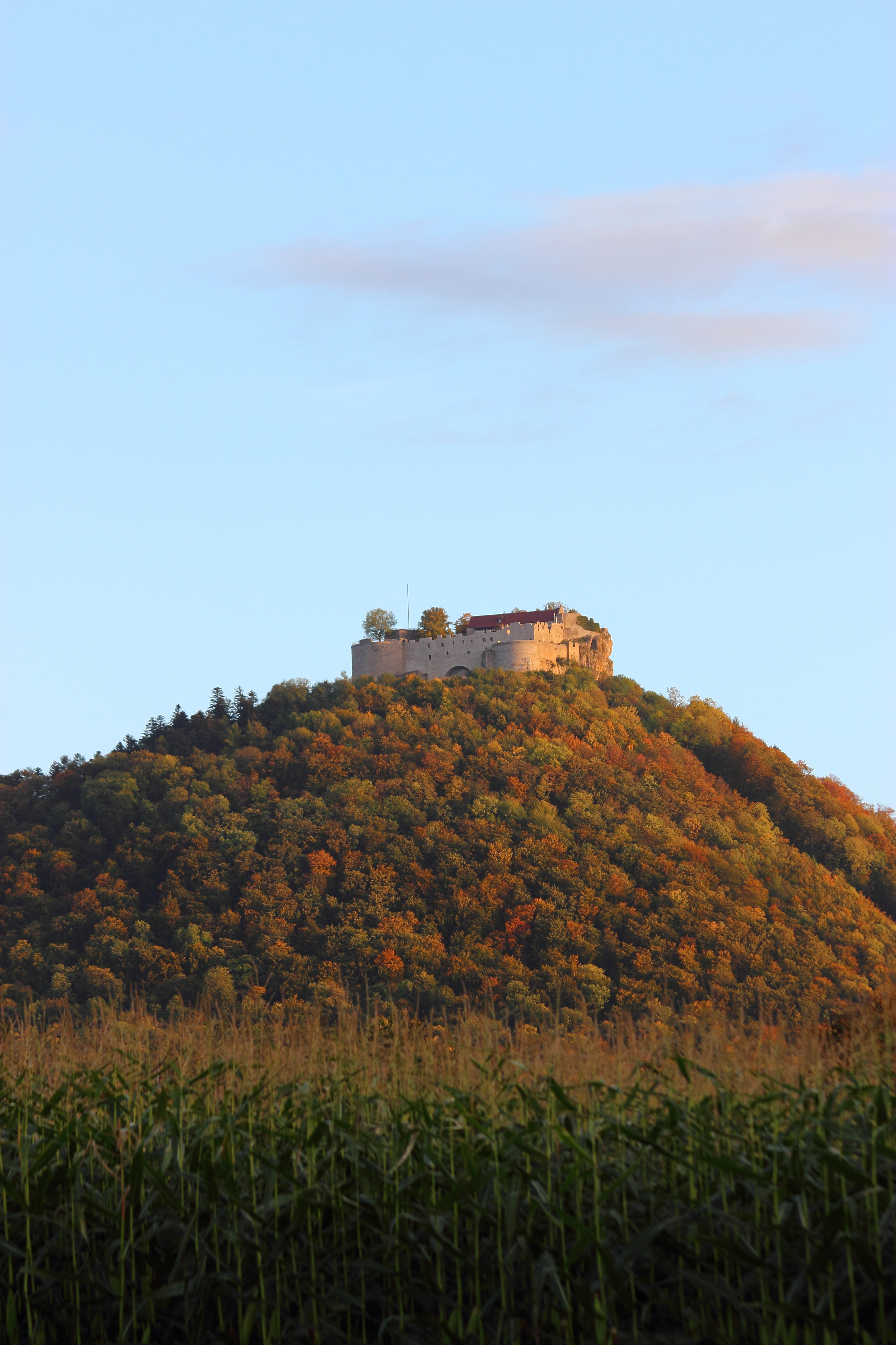 Hohenneuffen Castle by Vyalia