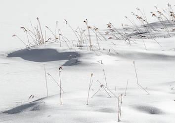 Arschkalt am Geroldsee    (2015) by photoshoptalent