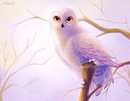 Snowy Owl by TQONB