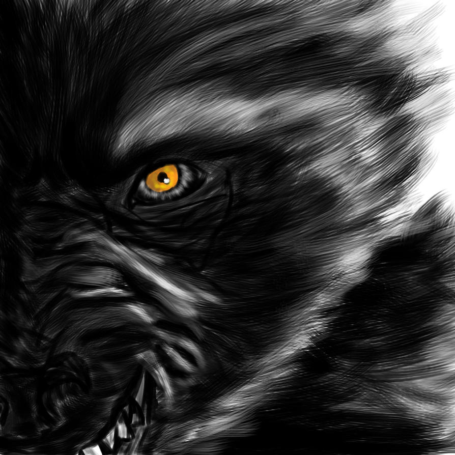 Wolf Eye by ArtBourne