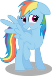 shy rainbow dash 2nd vector