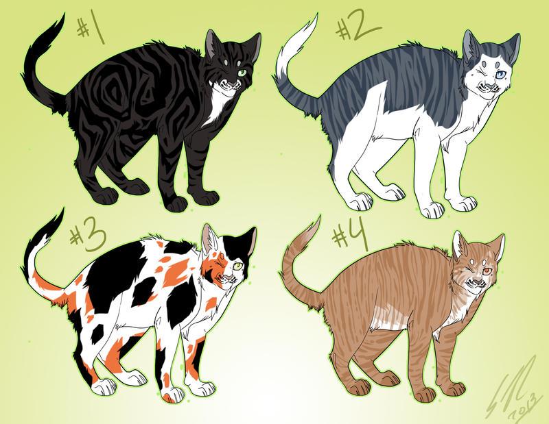 Adopt Cat Male Spraying Site Petfinder Com