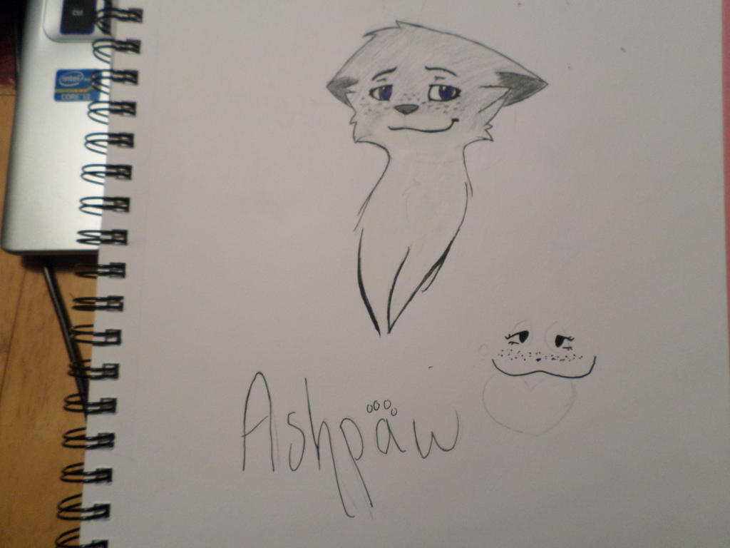 Little Ashy by Frozen-Icicles