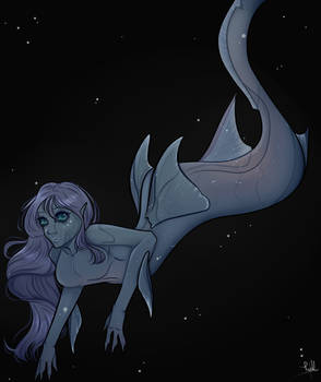 Chimera Shark