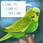 Decembird 09 - Pet