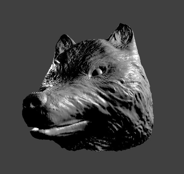Wolf Sculpting