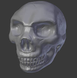 Skull sculpting