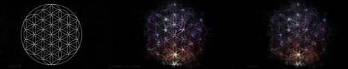 Flower Of Life - Nebula by Waysh