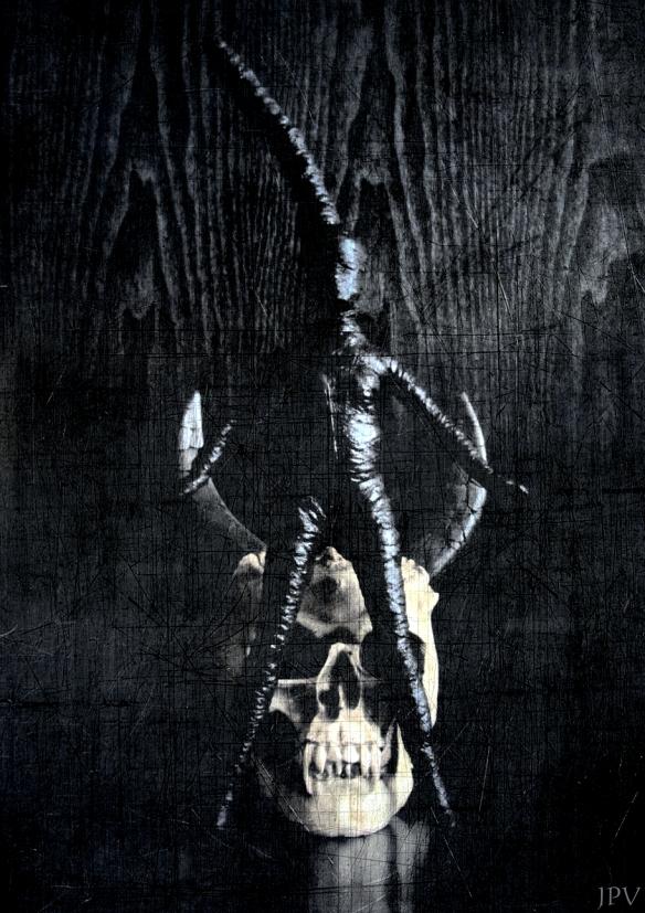 Voodoo Fetisch Doll by Jotpeh