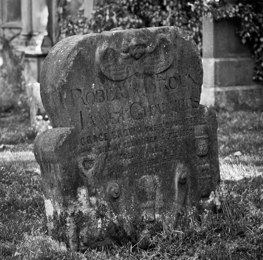 Quiet as the Grave by BusterBrownBB