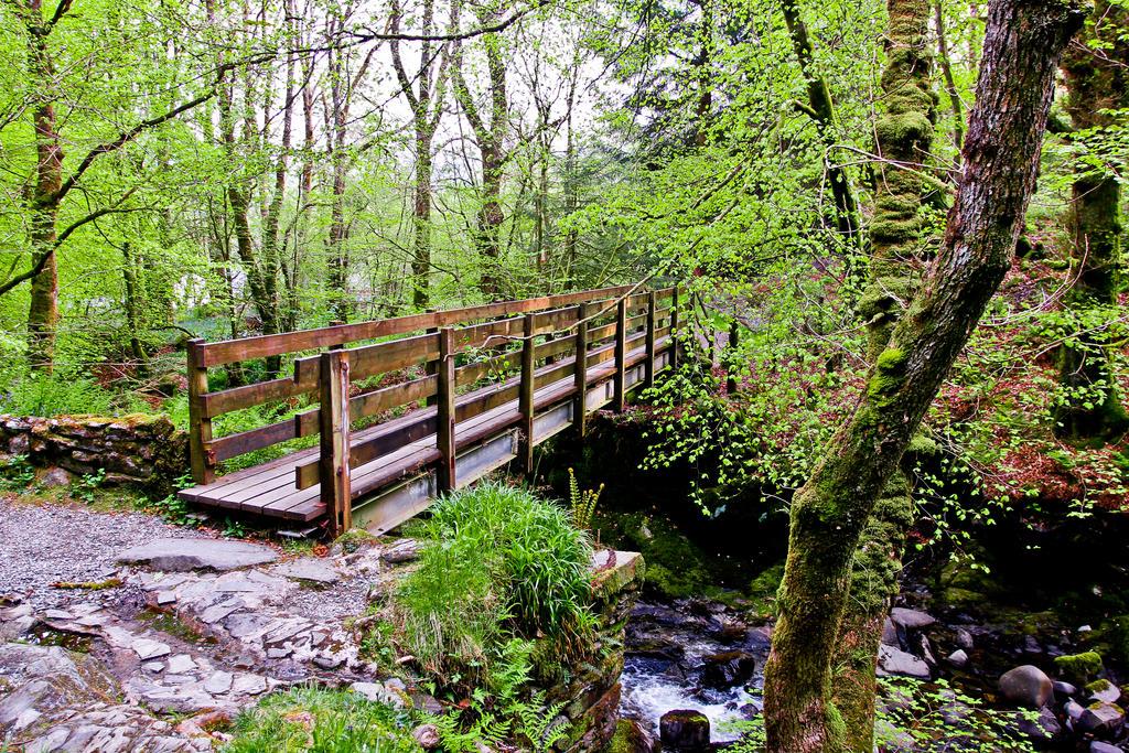 Wood3n Bridge by BusterBrownBB