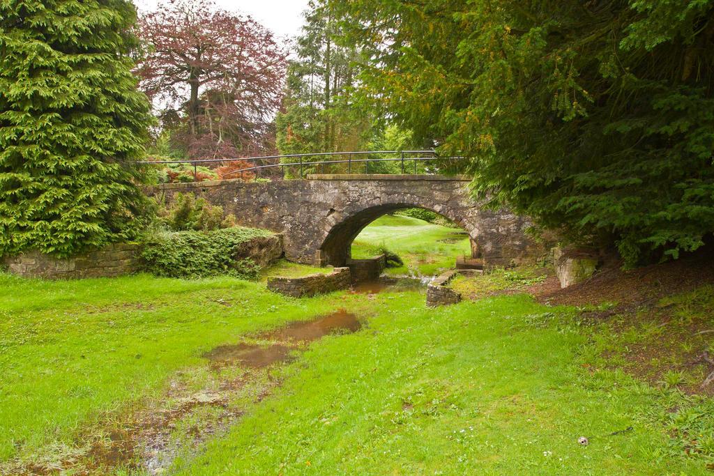 Pretty park Bridge by BusterBrownBB