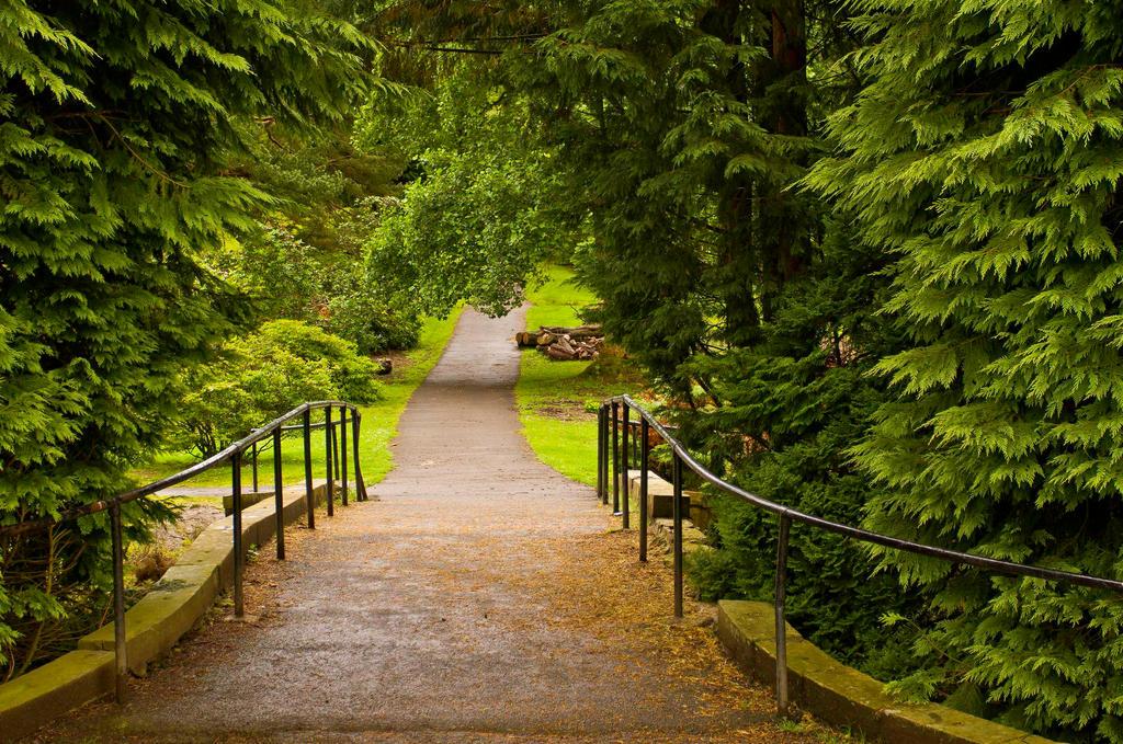 Park walkway by BusterBrownBB