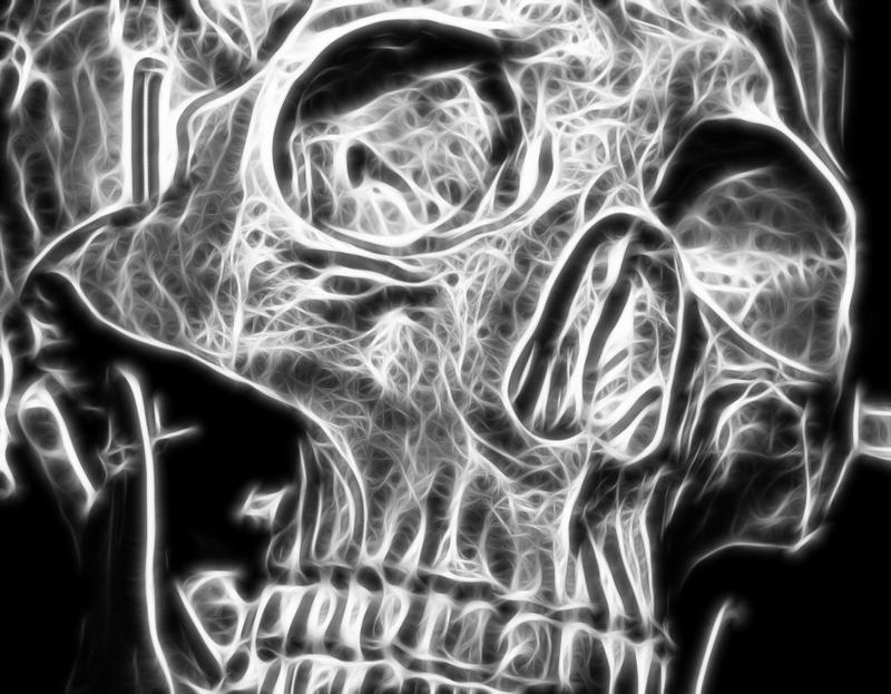 Skull Art by BusterBrownBB