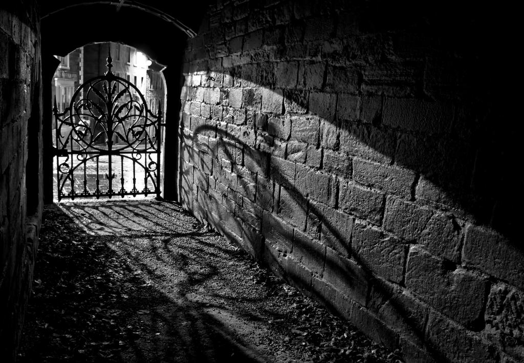 Shadows and Light by BusterBrownBB