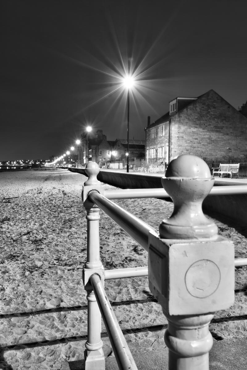 Portobello by BusterBrownBB
