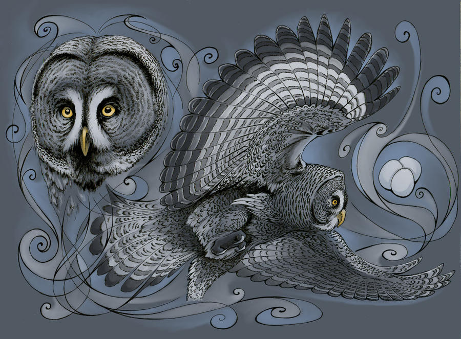Tribute to Owl by Nanethra