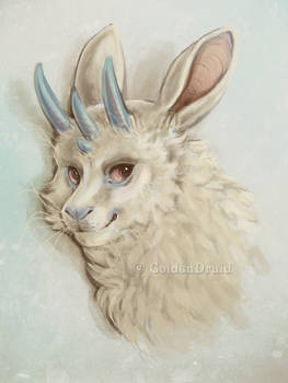 Jackalope - A New Breed