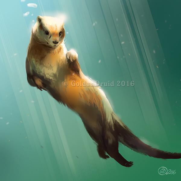 fddcf7a21 Swimming Otter - SpeedPaint by GoldenDruid on DeviantArt
